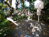 2013-11-24_0045.JPG