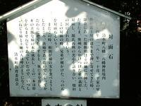 2013-11-24_0048.JPG
