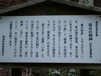 2013-04-28_0032.JPG